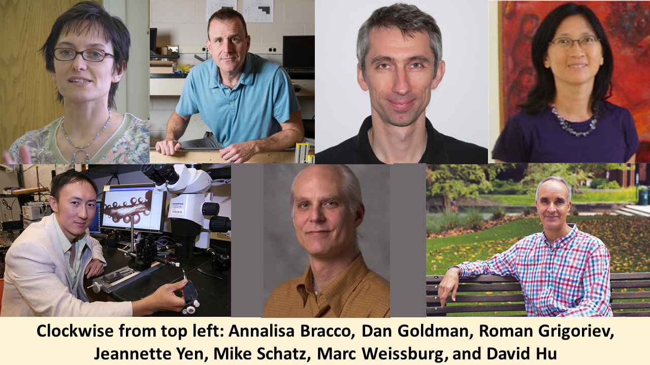 College of Sciences faculty help organize 71st APS Division of Fluid Dynamics Meeting.