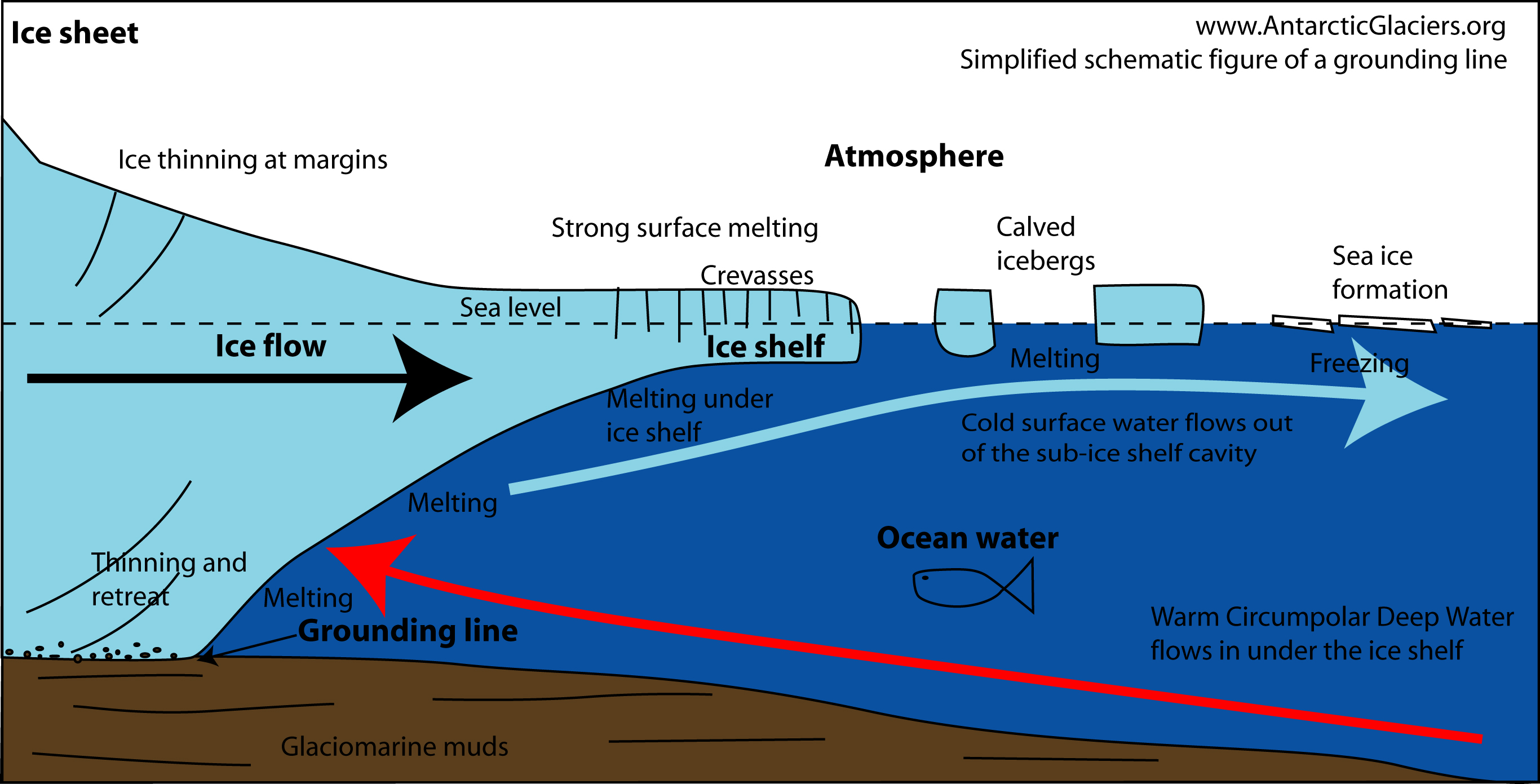 Glacier grounding line diagram