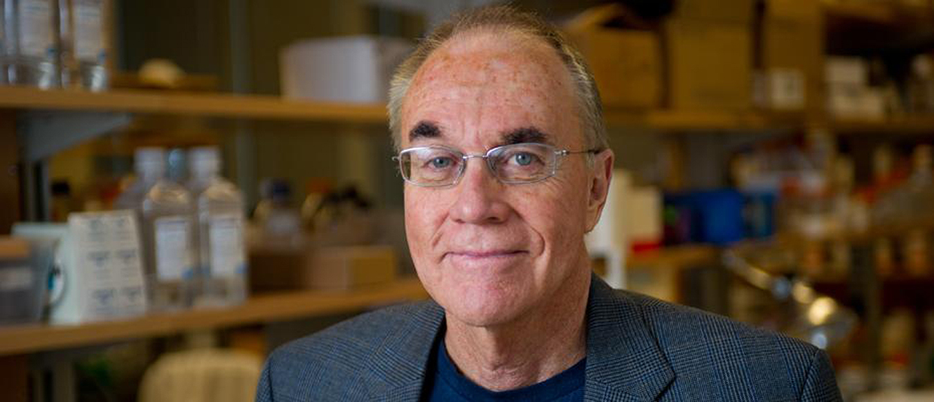 John McDonald, professor in the School of Biological Sciences and director of the Integrated Cancer Research Center.