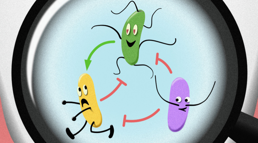 The hidden social network of microbes