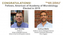 Kostka, Weitz: Fellows of the American Academy of Microbiology