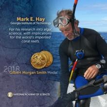 Mark Hay, Recipient of 2018 Gilbert Morgan Smith Medal (Courtesy of National Academy of Sciences)