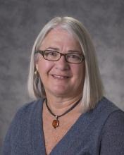 Lizanne DeStefano - Executive Director, Georgia Tech Center for Education Integrating Science, Mathematics, and Computing (CEISMC) CEISMC