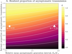 Asymptomatic transmission
