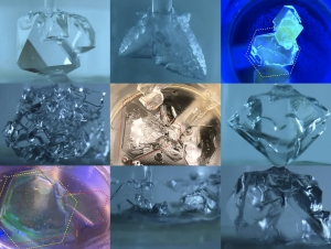 Clathrate crystals in various stages of growth, along with control treatments (top left, top middle samples).